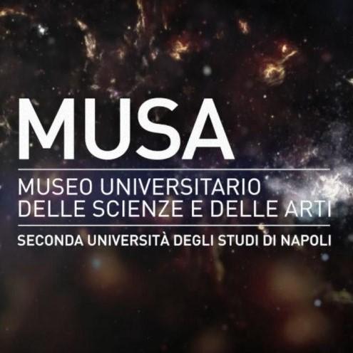 musa-museo-universitario3